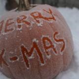 xmas-pumpkin-776395-776559